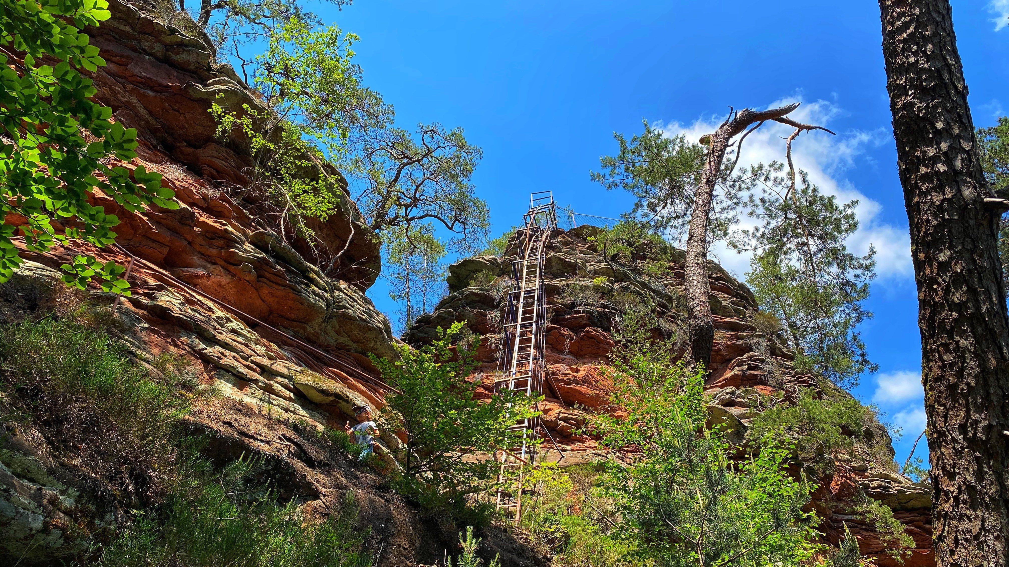 Hauenstein – Wandern, Klettern und ein Paddelweiher in der Pfalz