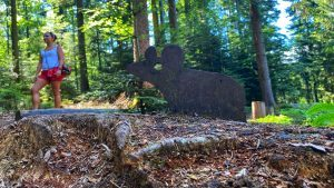 Wildkatzenpfad – Erlebnispfad in Bad herrenalb