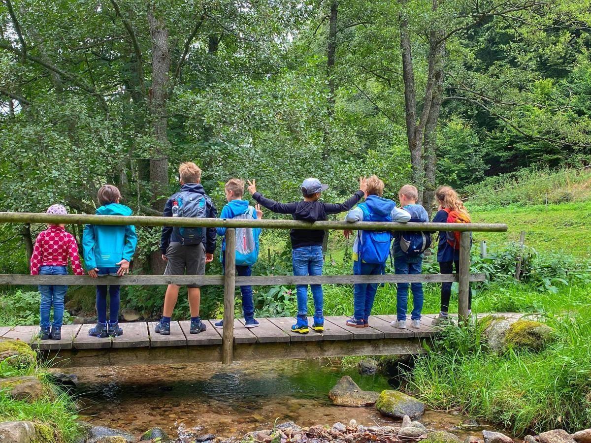 Gaisbach Brücke Bad Herrenalb