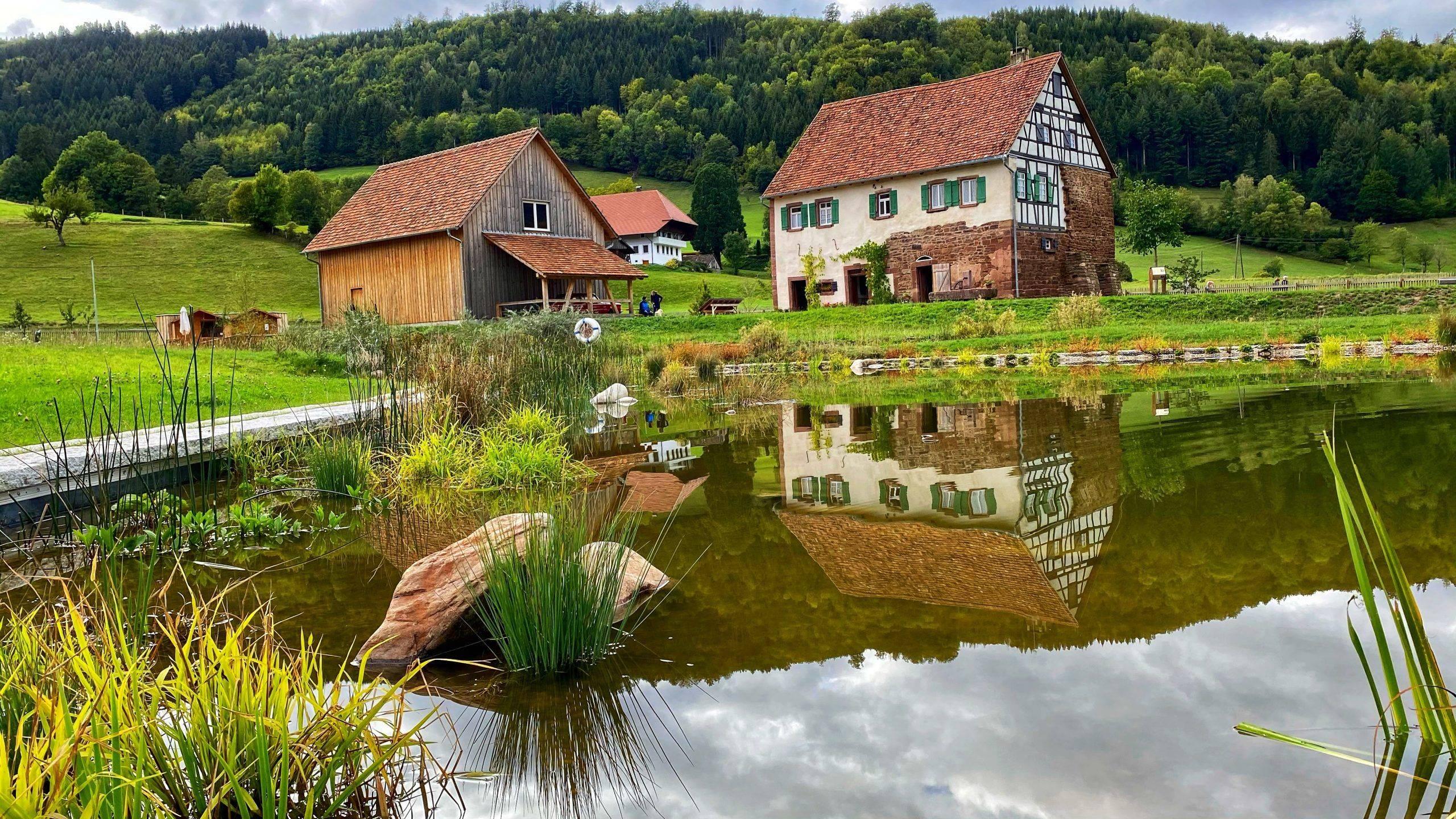 Vogtsbauernhöfe – Familien Ausflug  ins Schwarzwälder Freilichtmuseum