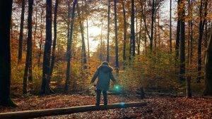Walderlebnispfad in Ettlingen-Spessart ~ Ein Erlebnispfad der seinem Namen alle Ehre macht
