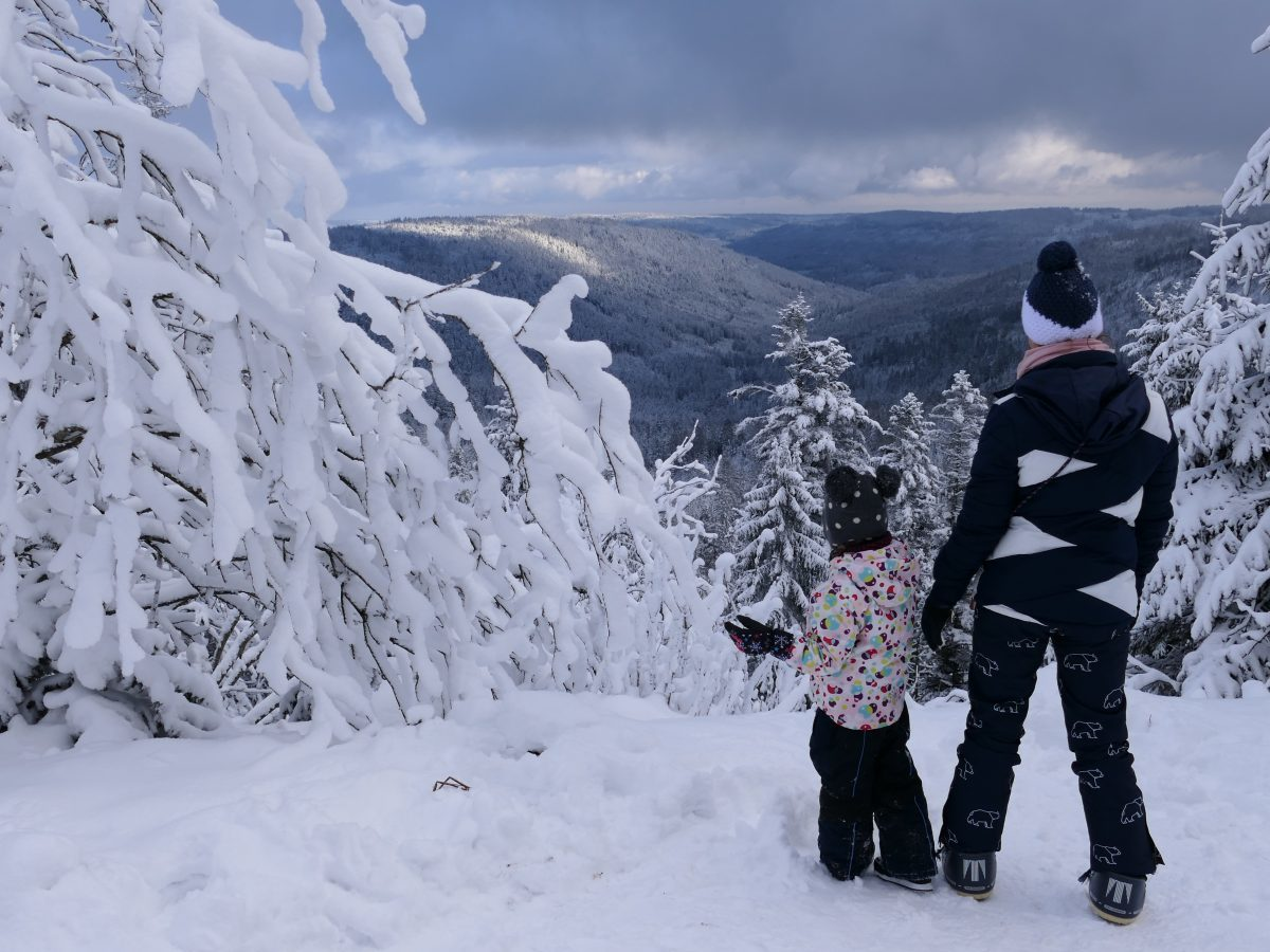 Wildseeblick im Winter