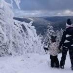 Ruhestein ~ Wandern & Rodeln im nördlichen Schwarzwald. Winterspaß mit den Kindern im Schnee