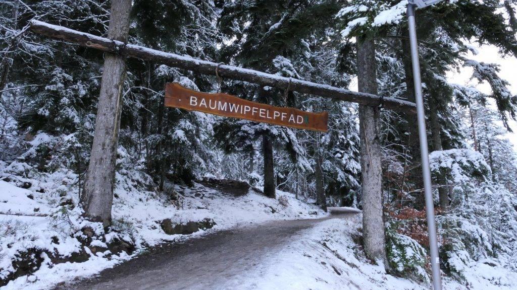 Baumwipfelpfad Bad Wildbad Winter