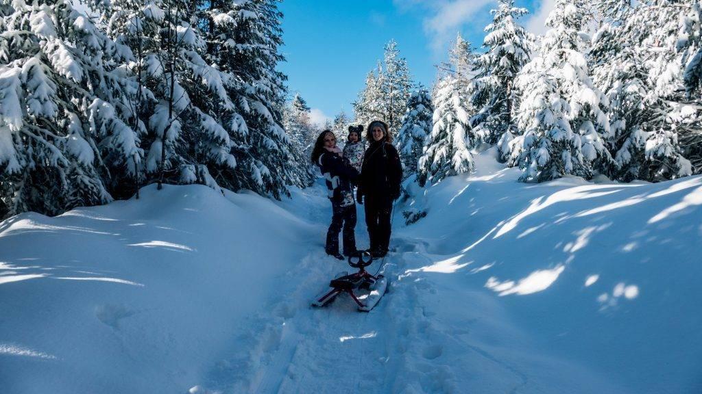 Badener Höhe Wanderweg