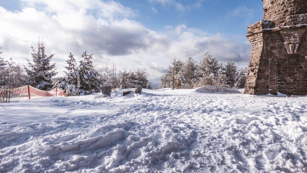 Badener Höhe im Schnee