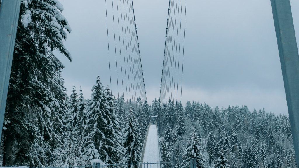 Hängebrücke Wildline Winter