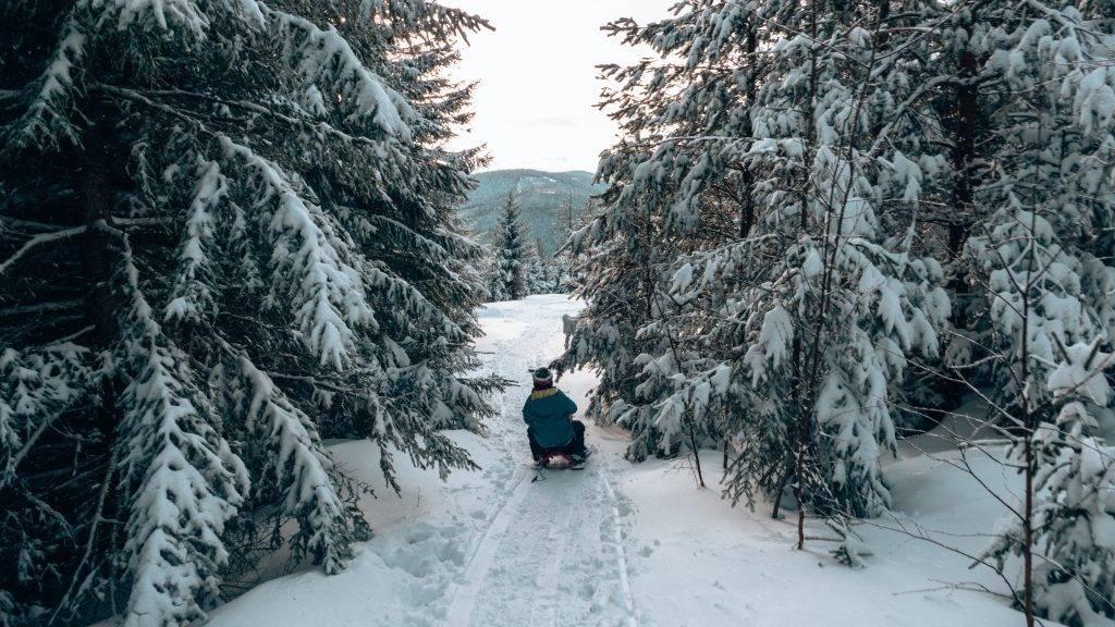 Rodeln Winter Herrenwies