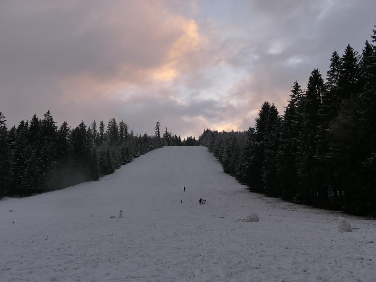 Rodeln Winter Schwarzwald