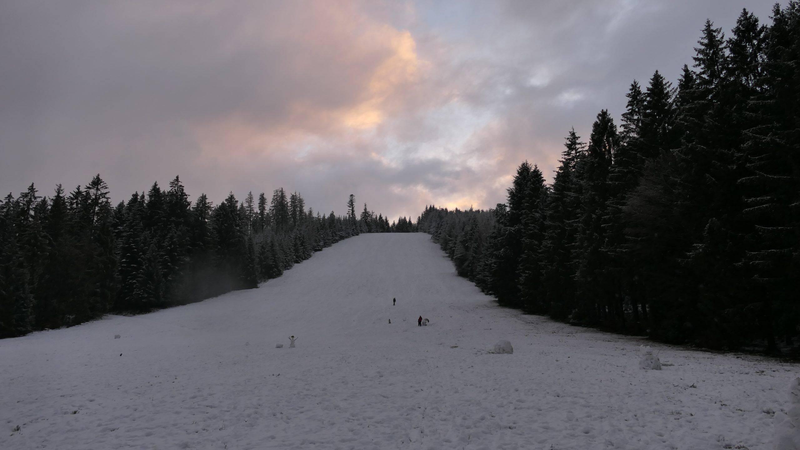 Familien Winterausflug zur Roten Lache im Schwarzwald. Schlittenfahren & Wandern in Forbach