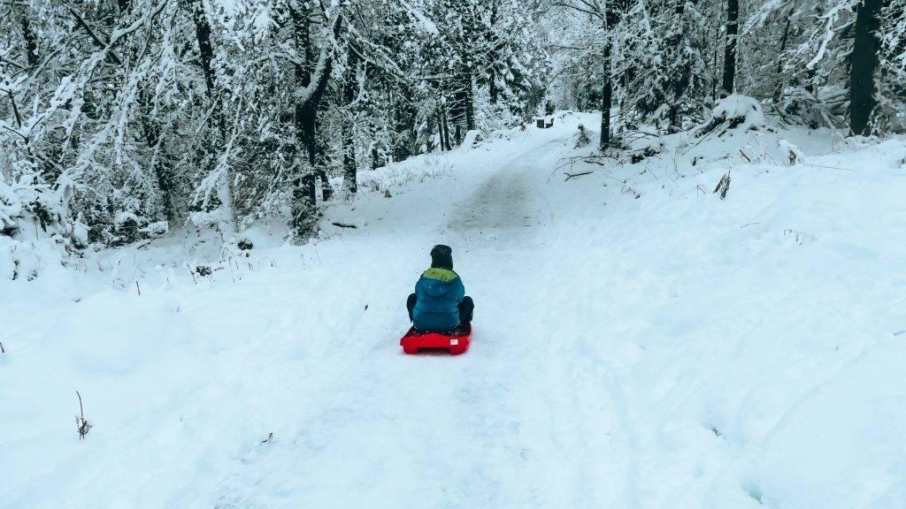 Schlitten fahren Schwarzwald