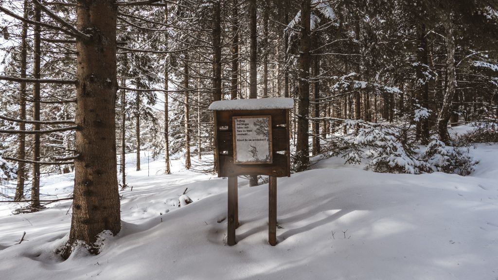 Walderlebnispfad Forbach Herrenwies