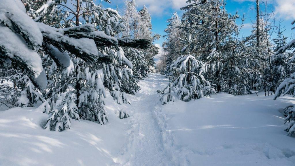 Wandern Schnee Herrenwies