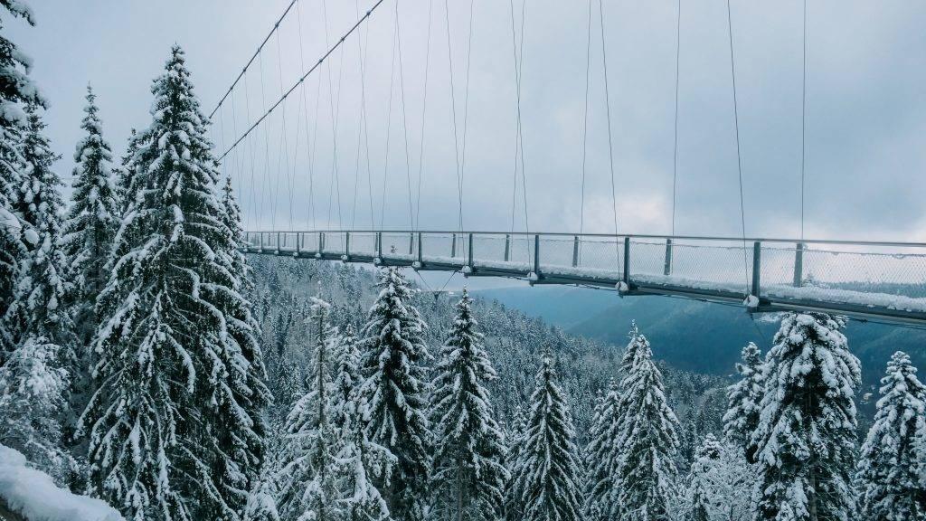 Wildline Hängebrücke Winter