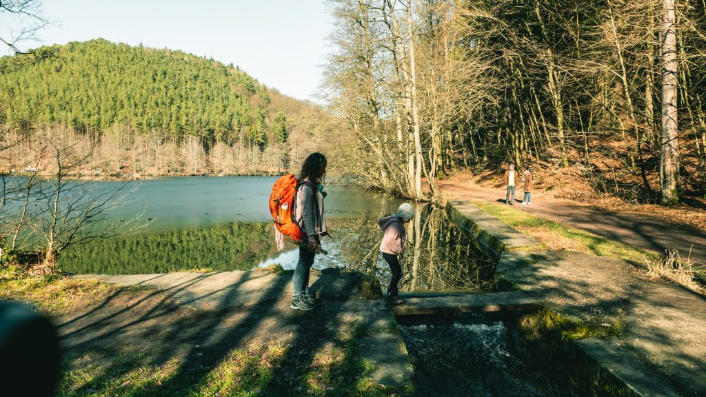 Wandern Kinder Dahner Felsenland