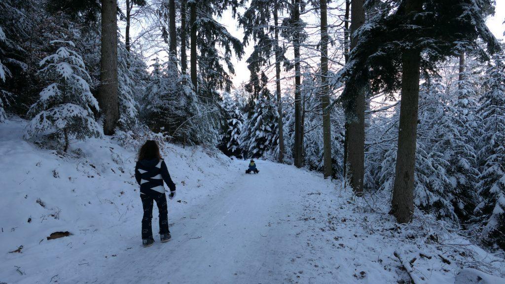 Schlittenfahren Winter Wald