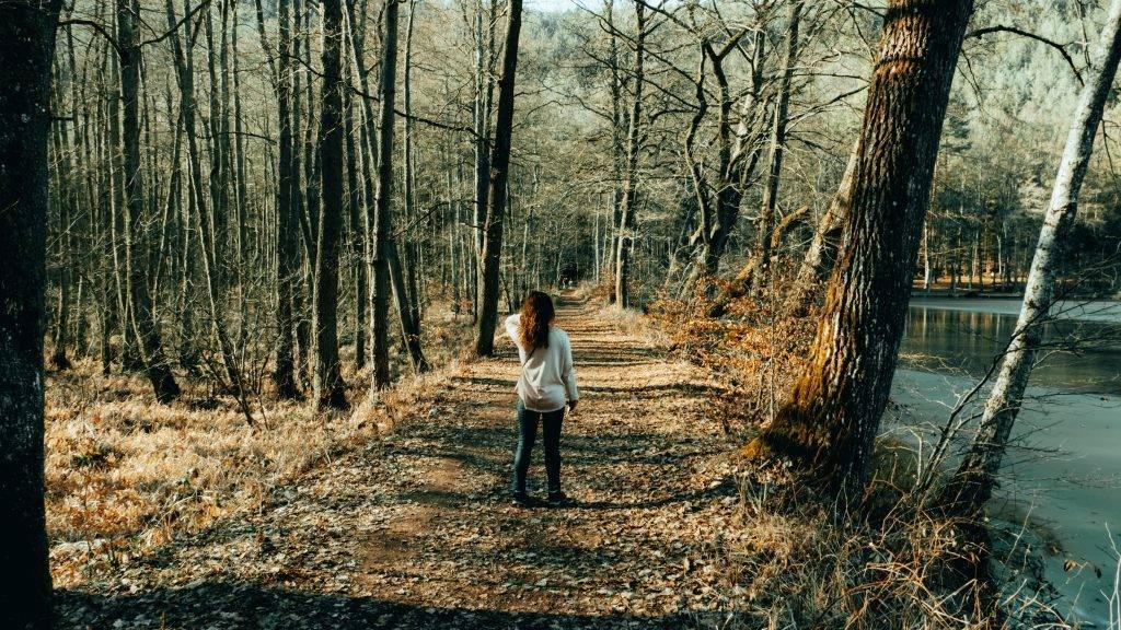 Wandern Pfälzerwald