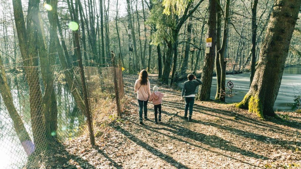 Wandern Kinder Erlebenbach