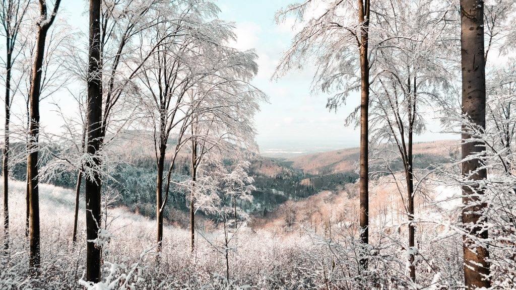 Winter Schwarwzald Ausblick