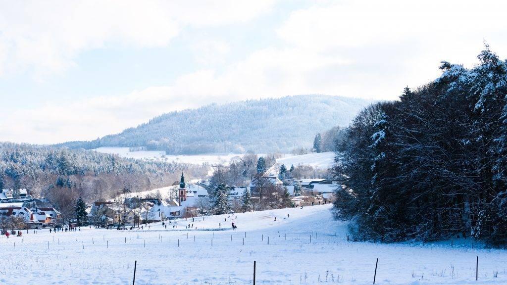 Moosbronn Winter