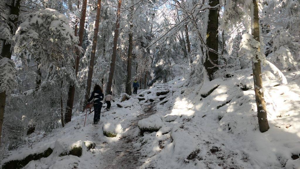 Winter Wandern Schwarzwald