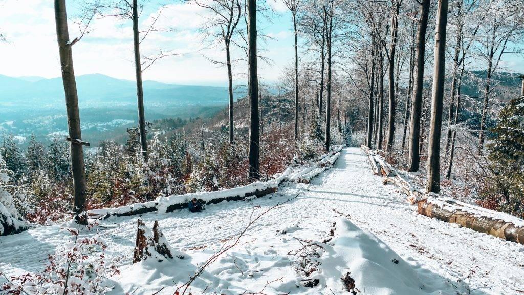 Winter Wonderland Schwarzwald
