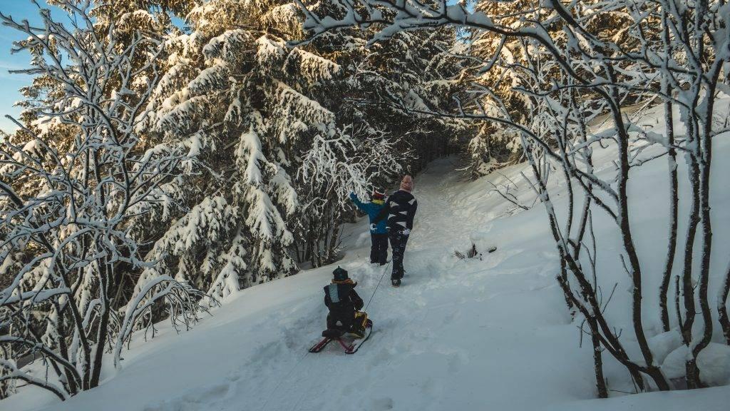 Winterwandern Kinder Schwarzwald