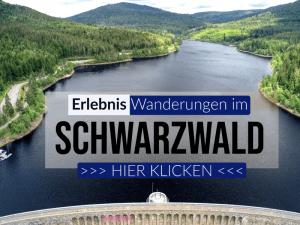 Erlebnis Wanderung Kinder Schwarzwald