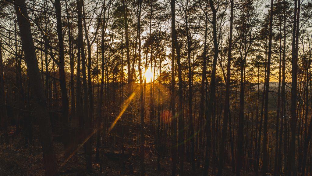 Sonnenunterang Geisgterschloss Tour