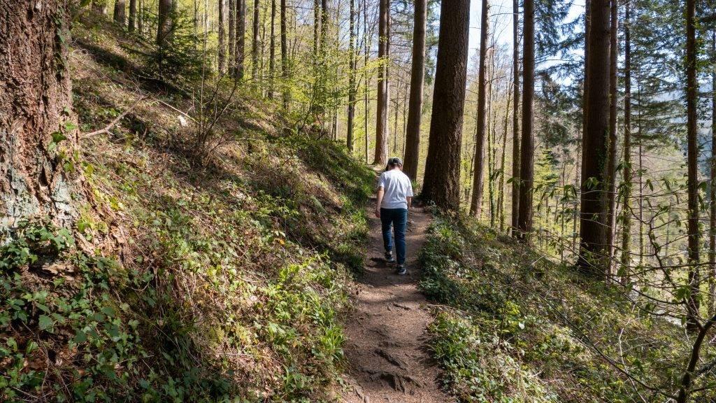 Wandern Schwarzwald Kreuzfelsen