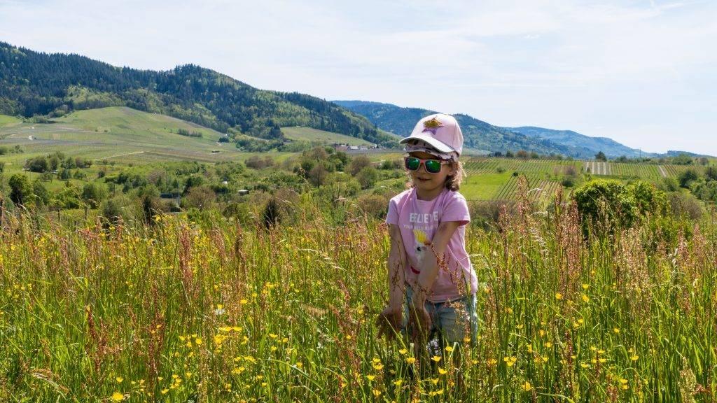Blütenwiese Schwarzwald Kinder