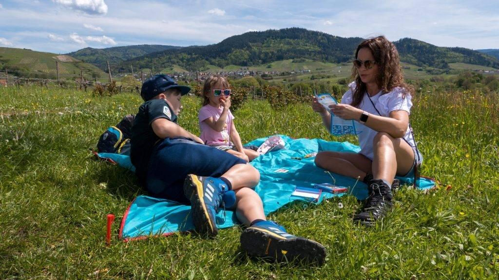 Picknick Insekten Rallye