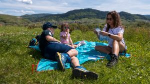 Insekten Rallye in Baden-Baden – Urlaubsgefühle frei Haus im nördlichen Schwarzwald