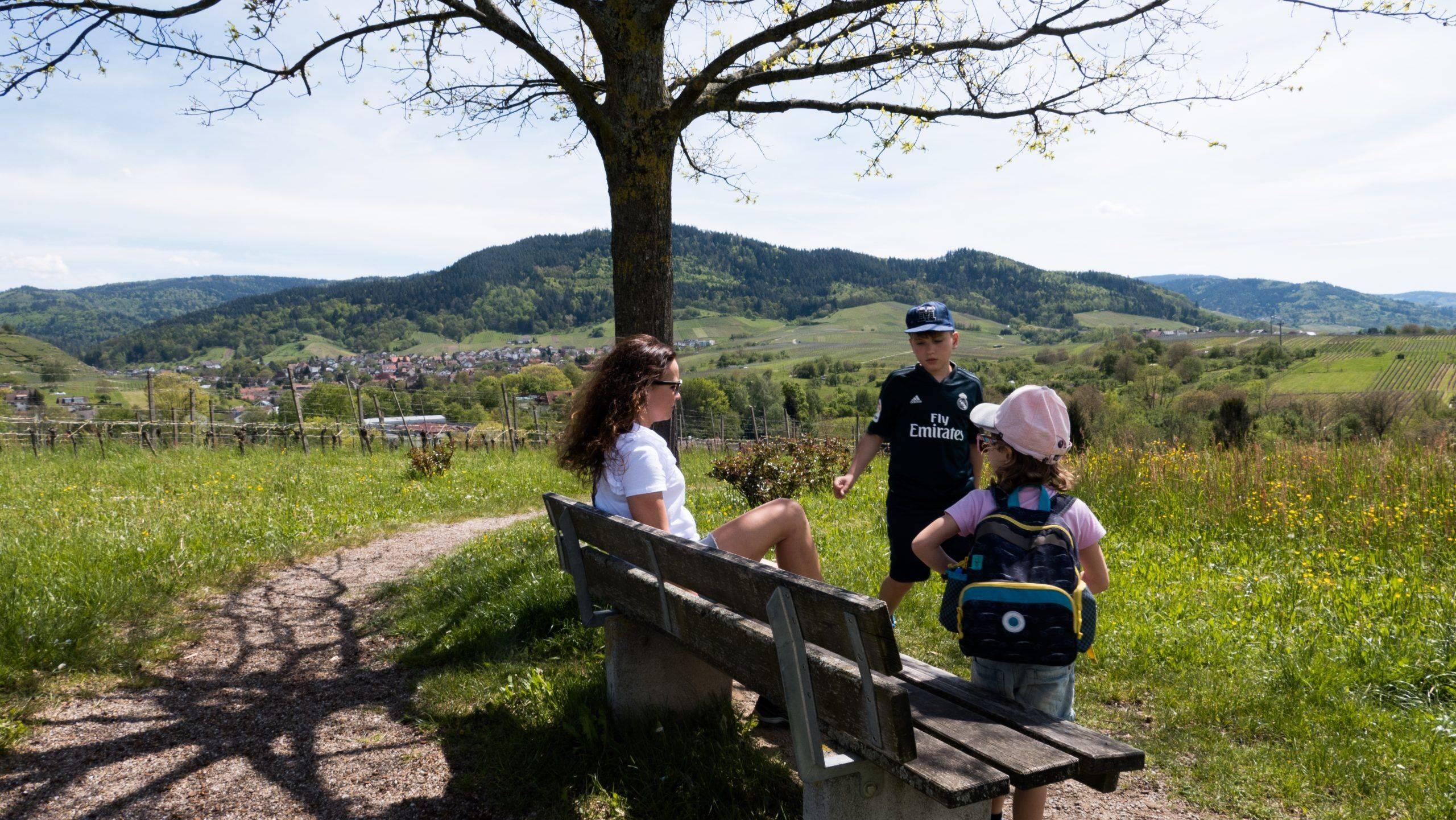 You are currently viewing Insekten Rallye in Baden-Baden – Urlaubsgefühle frei Haus im nördlichen Schwarzwald