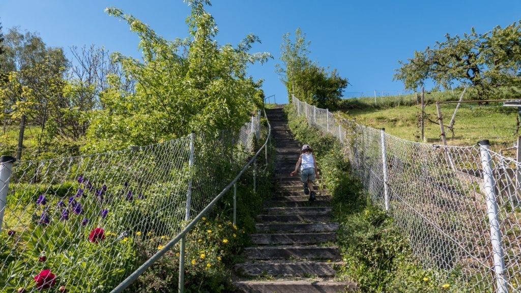 Stairway to heaven Schwarzwald