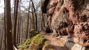 Read more about the article Teufelspfad in Pirmasens – Wandern, Wasserfälle und ganz viel Pfälzerwald