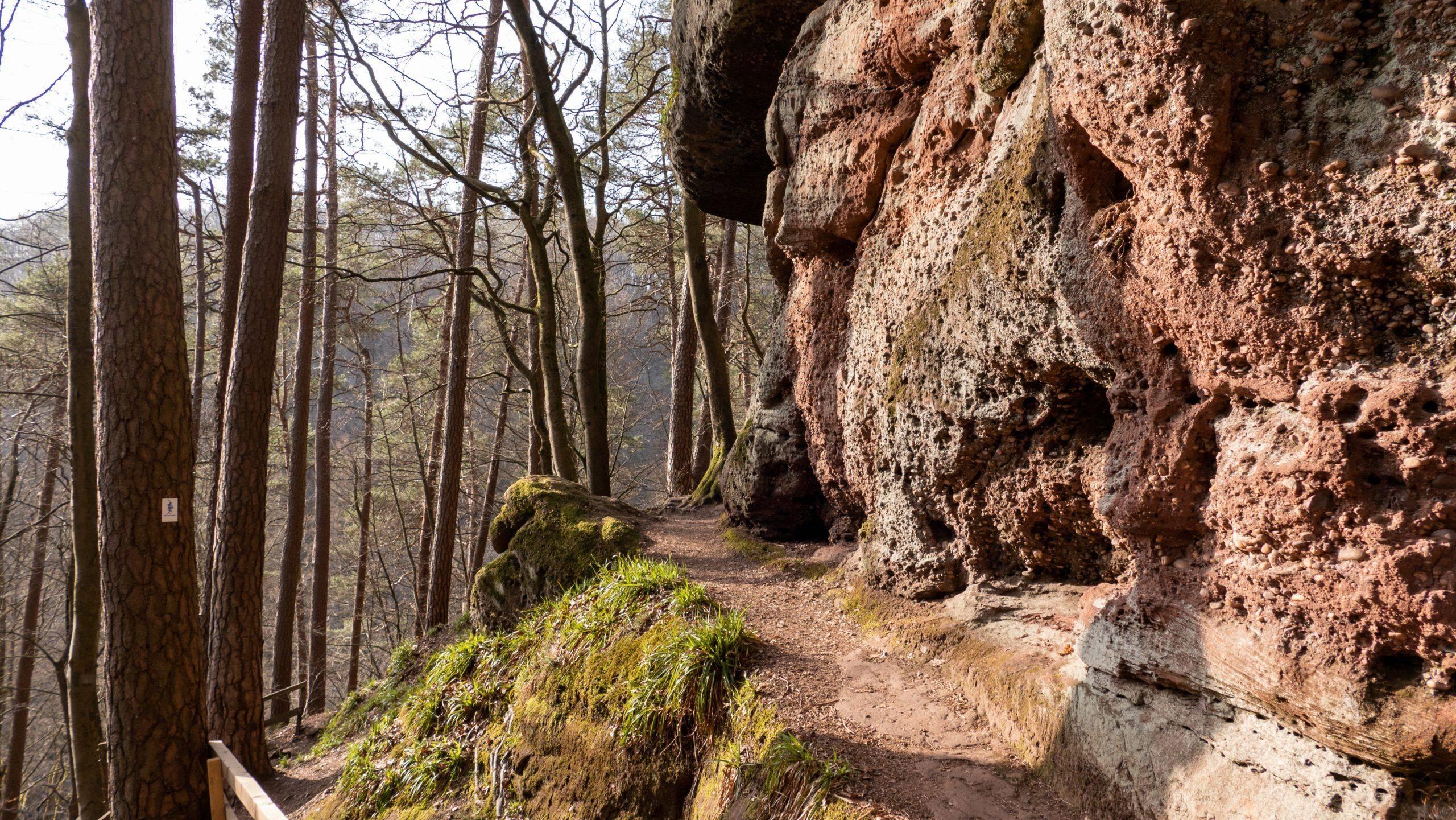 Teufelspfad in Pirmasens – Wandern, Wasserfälle und ganz viel Pfälzerwald