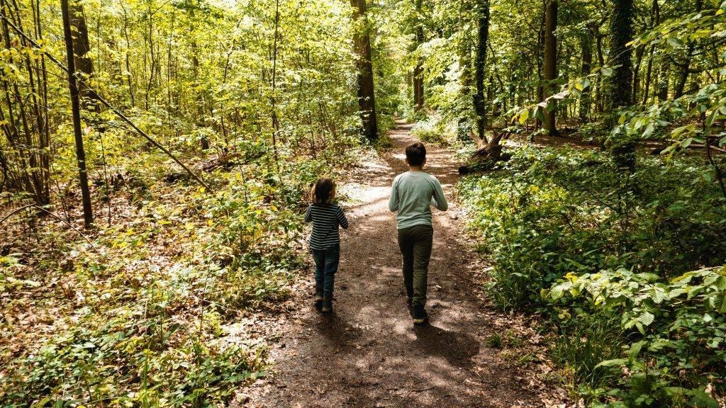 Wandern Vorderpfalz Kinder