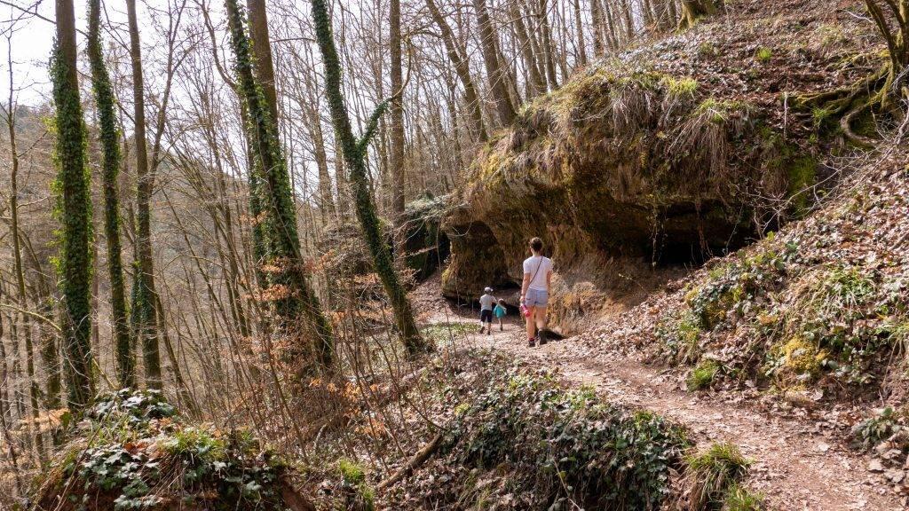 Wandern Teufelspfad Pfälzerwald