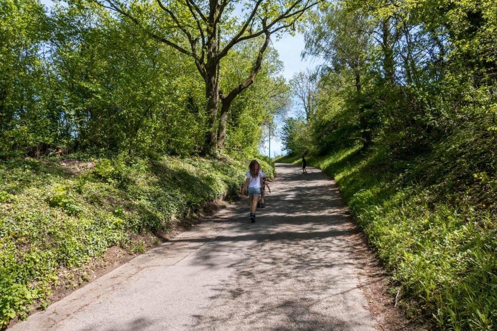 Wanderung Kinder Schwarzwald