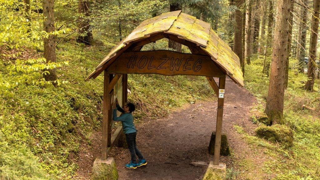 Holzportal Holzweg