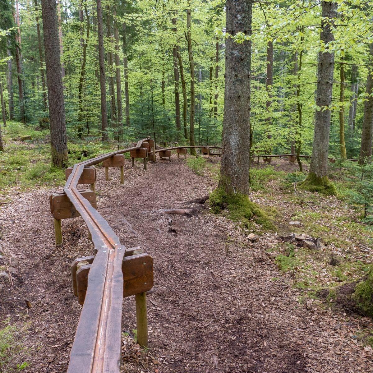 Holzweg Baiersbronn Schwarzwald