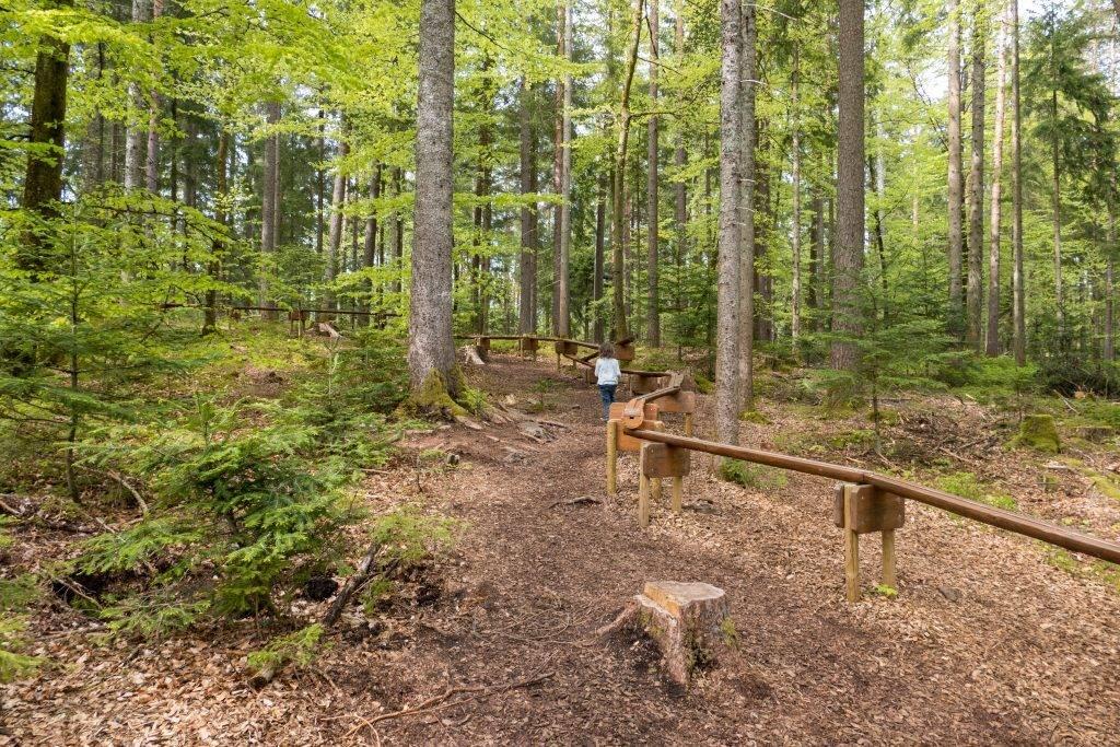 Kugelbahn Schwarzwald