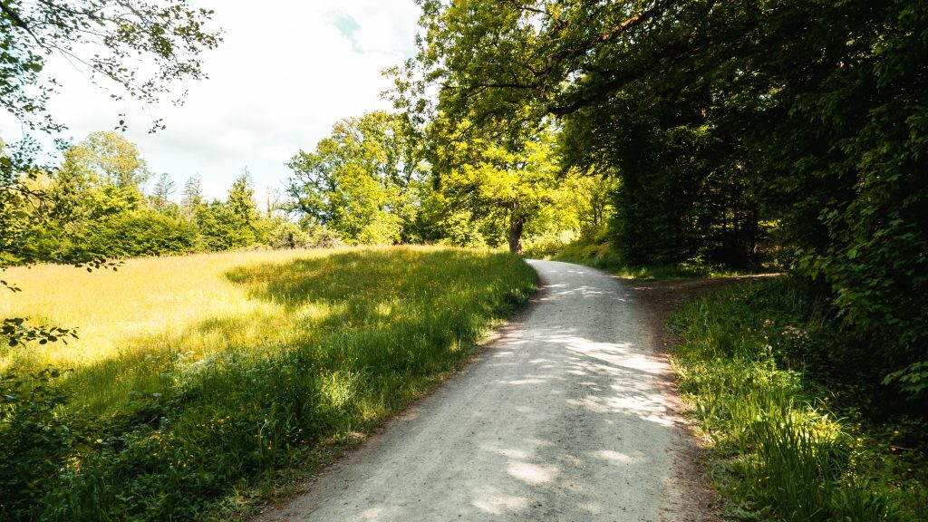 Lorch Wandern