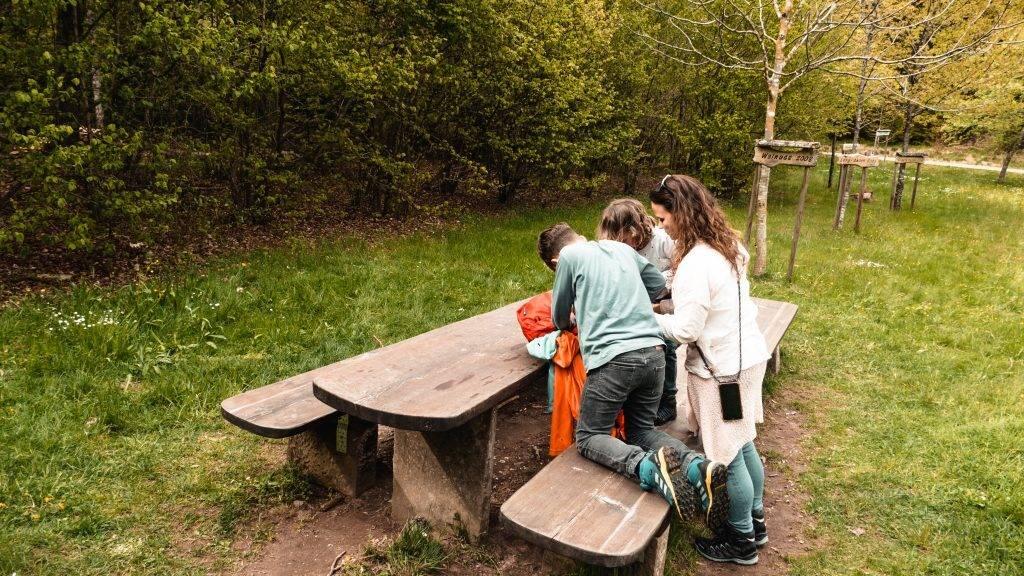 Picknick Holzweg