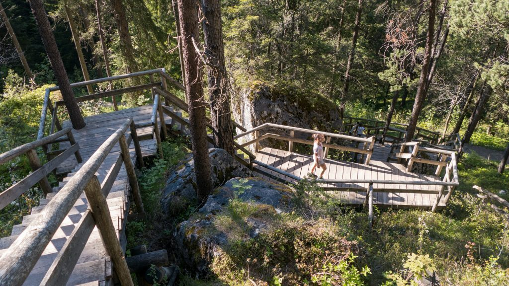 Walderlebniszentrum Ziegelwies Aussichtspunkt