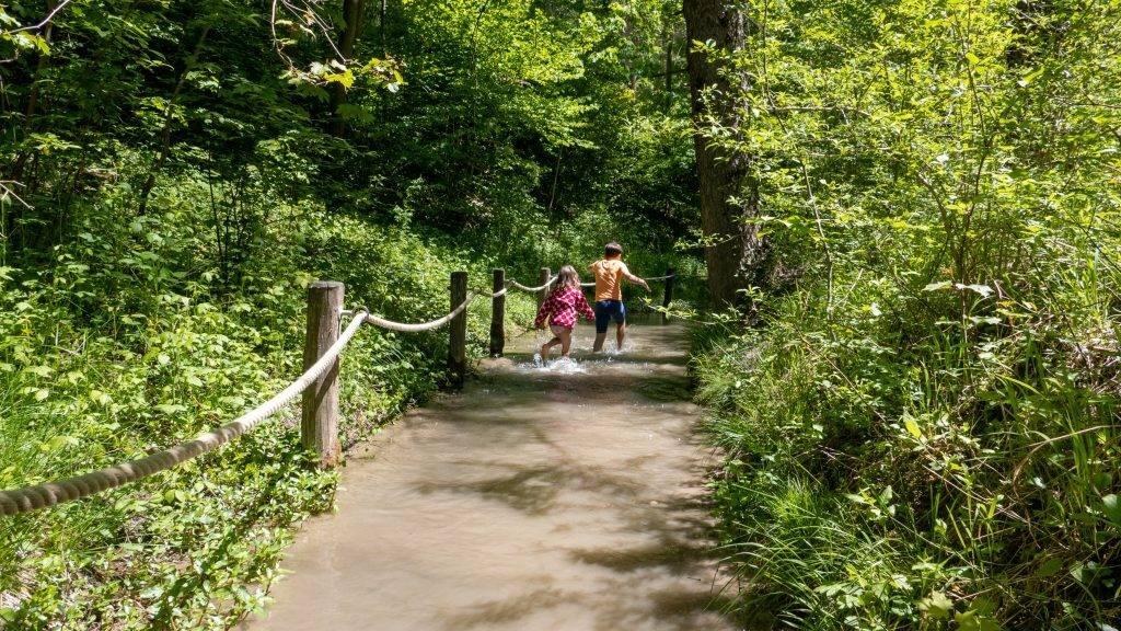 Walderlebniszentrum Ziegelwies Bachdurchquerung
