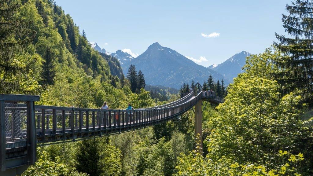 Walderlebniszentrum Ziegelwies Baumkronenweg