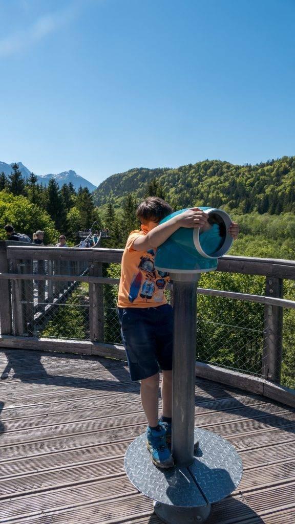 Walderlebniszentrum Ziegelwies Baumkronenweg Ausguck