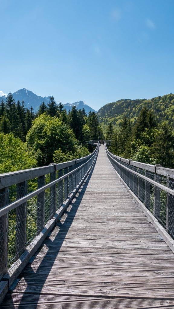 Walderlebniszentrum Ziegelwies Baumkronenweg Füssen